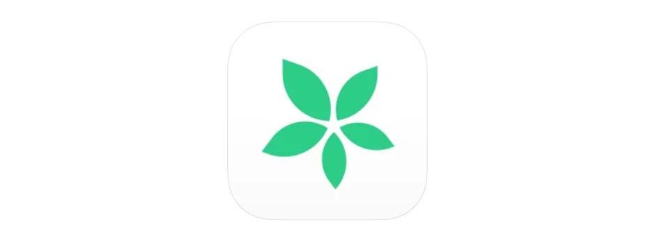 家族やカップルのためのスケジュール共有カレンダーアプリ「TimeTree」