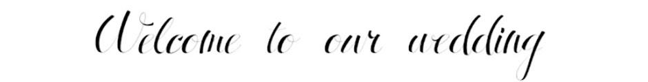 おしゃれな筆記体フォント Antrokas