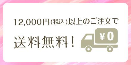 12,000円以上で送料無料