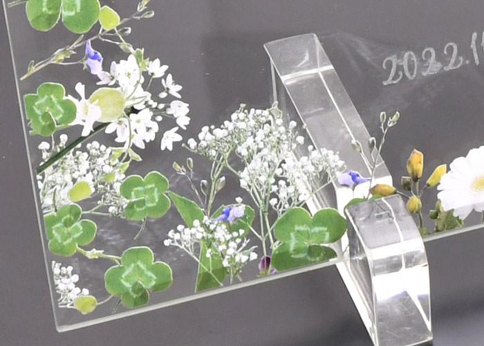 ガラスの結婚証明書 グリーンフロレットたくさんの四つ葉のクローバー