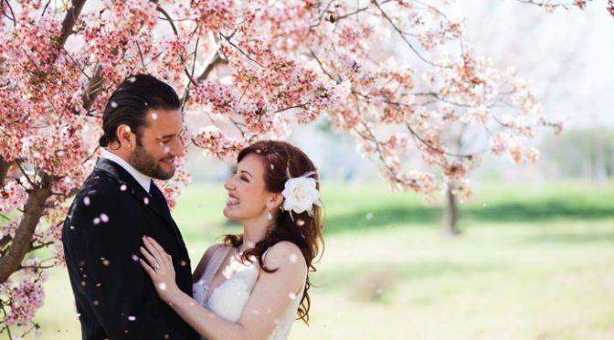 春魅せウェディングにまだ間に合う!儚くて美しい桜アイテム